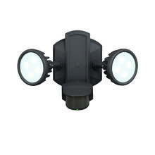 Vaxcel International T0098 - Lambda Dualux� Outdoor Security Wall Light
